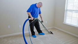 Specialist carpet cleaning