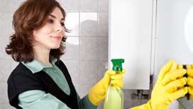 Precise cleaning for landlords and estate agents